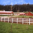 Maine Horse Stables and Stalls