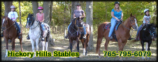 Hickory Hills Stables